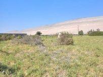 Venta parcela una hectárea en kilómetro 15 Lluta, Arica
