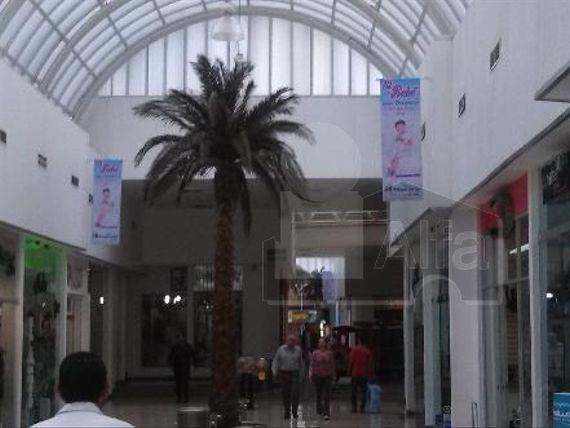 """Local en centro comercial en renta en Tangamanga, <span itemprop=""""addressLocality"""">San Luis Potosí</span>, San Luis Potosi"""