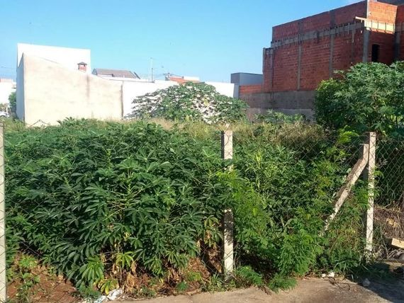 "Excelente terreno a venda em avenida de <span itemprop=""addressLocality"">Americana</span>"