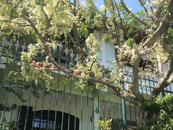 """Casa Duplex para Venda em <span itemprop=""""addressLocality"""">Engenhoca</span> Niterói-RJ - gm241"""