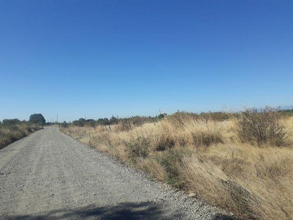 Se venden ultimos de terrenos kilometro 8 camino a Coihueco
