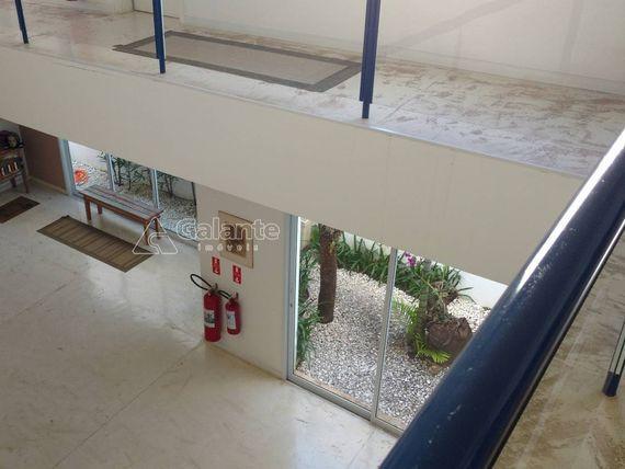 "Prédio para aluguel em <span itemprop=""addressLocality"">Cambuí</span>"