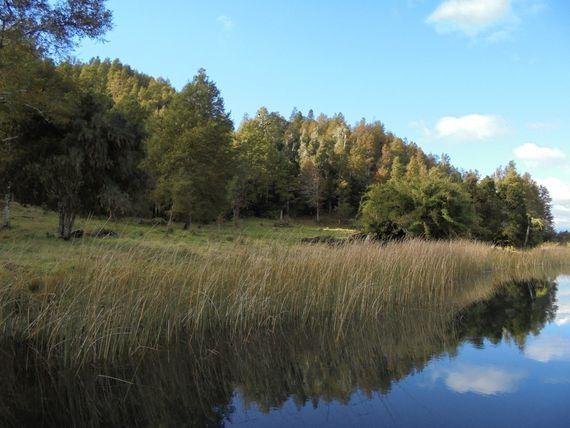 Fundo Turísitico, Ganadero y Forestal