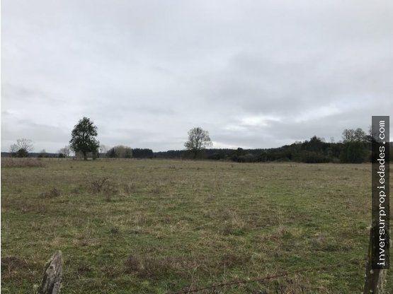 Terrenos Paillaco Los Silos - Camino a Futrono