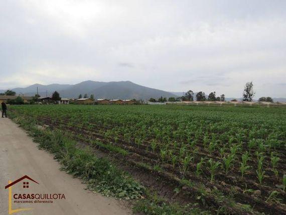 Inmenso terreno plano de 5 hectáreas