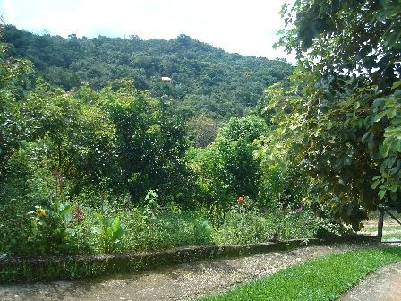 """Fazenda com 2 quartos e Salas, Nova Lima, <span itemprop=""""addressLocality"""">Zona Rural</span>, por <span itemscope="""""""" itemtype=""""http://schema.org/TradeAction""""><span itemprop=""""price"""">R$ 120.000</span></span>"""