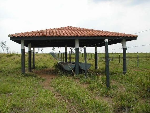 "Fazenda à venda, 1887600 m² por <span itemscope="""" itemtype=""http://schema.org/TradeAction""><span itemprop=""price"">R$ 10.500.000</span></span>- Área Rural de <span itemprop=""addressLocality"">Avaré</span> - Avaré/SP"