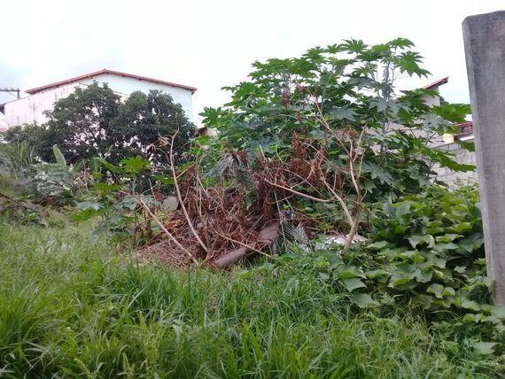 """Terreno residencial, <span itemprop=""""addressLocality"""">Parque São George</span>, Cotia."""