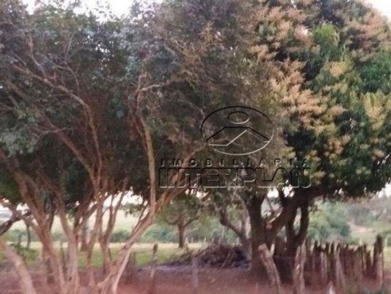 "Ref.: SI50113, Sitio, <span itemprop=""addressLocality"">Neves Paulista</span> - SP, Rural"