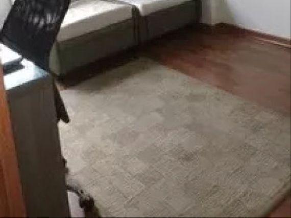 "Apartamento à venda de 80 m² - <span itemprop=""addressLocality"">Vila Leopoldina</span>, São Paulo."
