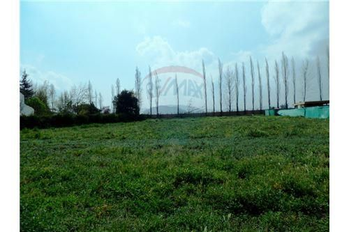 "Terreno 5000m², Chacabuco, <span itemprop=""addressLocality"">Colina</span>, por <span itemscope="""" itemtype=""http://schema.org/TradeAction""><span itemprop=""price"">UF 8.500</span></span>"
