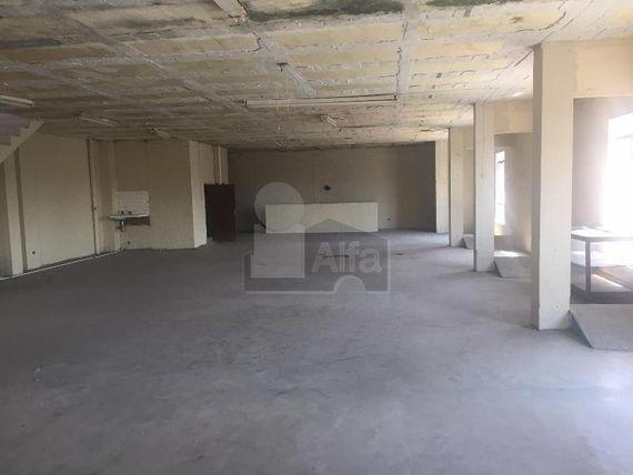 """Local comercial en renta en <span itemprop=""""addressLocality"""">Linares Centro</span>, Linares, Nuevo León"""