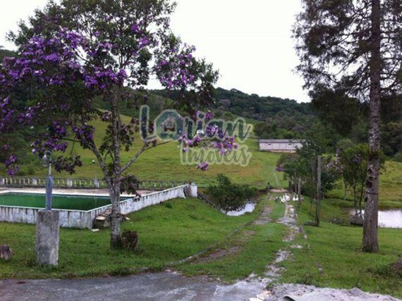 "Sitio com 8,5 Alqueires - <span itemprop=""addressLocality"">Embu</span>-Guaçu"