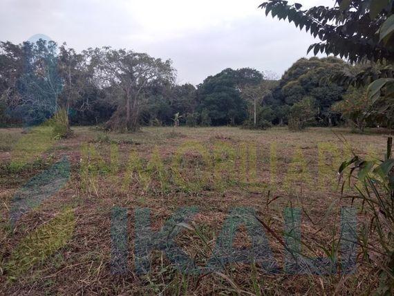 "Venta terreno 1206 m² isla de Juana Moza Tuxpan <span itemprop=""addressLocality"">Veracruz</span>, Isla de Juana Moza"