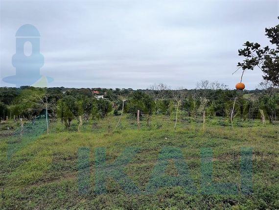"Vendo terreno 2123.64 m² Carretera Tuxpan-Tamiahua <span itemprop=""addressLocality"">Veracruz</span>, Banderas"