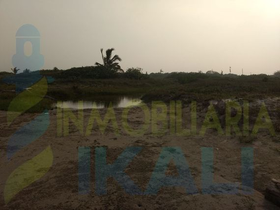 "Venta Terreno 200 hectáreas <span itemprop=""streetAddress"">Playa Tamiahua</span> <span itemprop=""addressLocality"">Veracruz</span>, Palo Blanco"