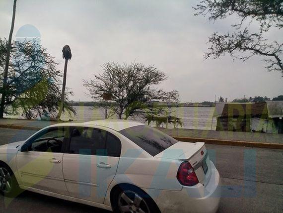 "Venta Terreno bulevar Maples Arce Tuxpan <span itemprop=""addressLocality"">Veracruz</span>, Adolfo Ruiz Cortines"
