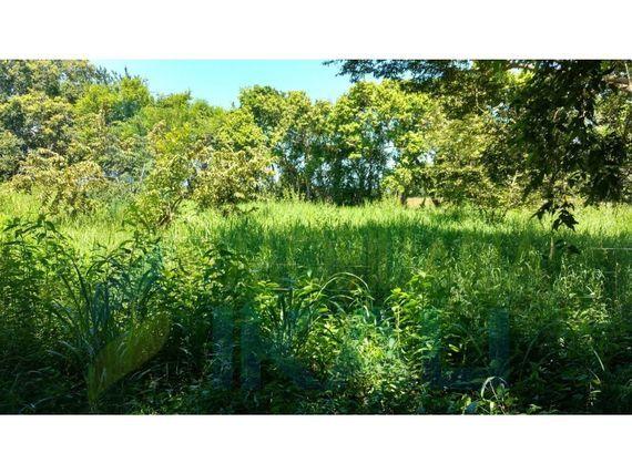 "Venta rancho 160 hectáreas con estero tamiahua <span itemprop=""addressLocality"">Veracruz</span>, Tampache"