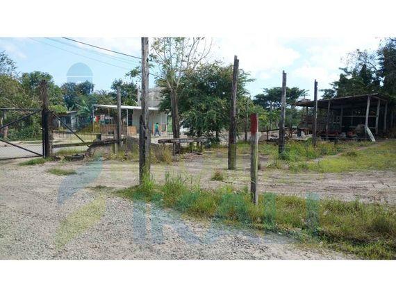 "Terreno renta 1400 m² detras de infonavit tenechaco Tuxpan <span itemprop=""addressLocality"">Veracruz</span>, Federico Garcia Blanco"