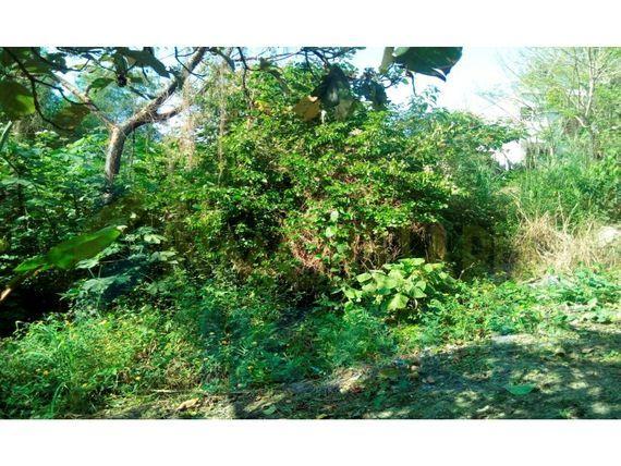 """Venta terreno colonia Las Granjas de Alto Lucero Tuxpan <span itemprop=""""addressLocality"""">Veracruz</span> 239.60 m², Alto Lucero"""