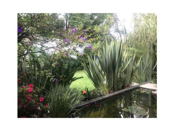 "VENTA CASA REMODELADA EN <span itemprop=""streetAddress"">Jardines Del Pedregal</span> CAS_989 MR/AG, Jardines del Pedregal"