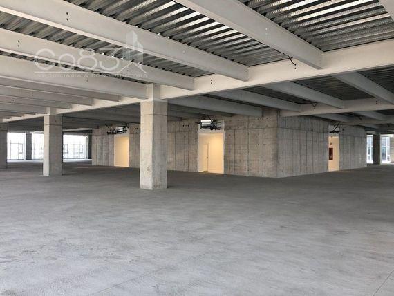 "Renta - Oficina - Carso Torre II - 250 m - <span itemscope="""" itemtype=""http://schema.org/TradeAction""><span itemprop=""price"">$ 135.000</span></span>"