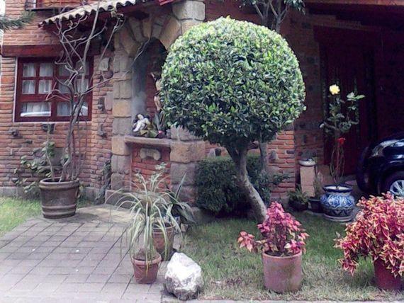 Casa en Bello Condominio 6 casas. Lomas San Angel.