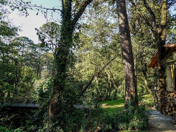 Acogedora y Práctica Casa En Pleno Bosque