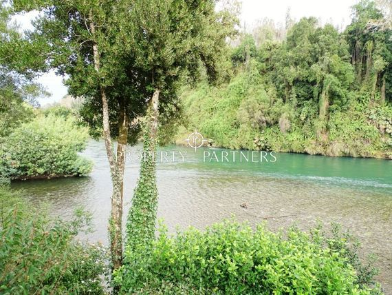 A orillas de los Rios Toltén y Pedregoso