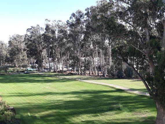 Arriendo Depto Nuevo Año Corrido Barrio Golf