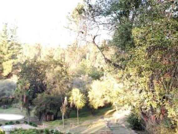 Venta Linda Parcela con Plantación de Nogales en Sta. María de Los Quillalles