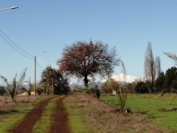 Hermosas parcelas camino a Pinto