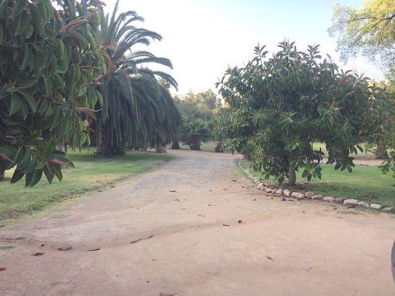Gran Terreno, Una Casa y Dos Cabañas en Quebrada Escobares