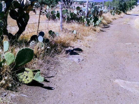 Terreno en Las Pintas, Talcoyuca, Hgo.