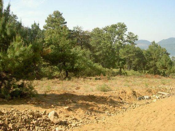 Terreno en venta en Zirahuen, ideal para casa de campo