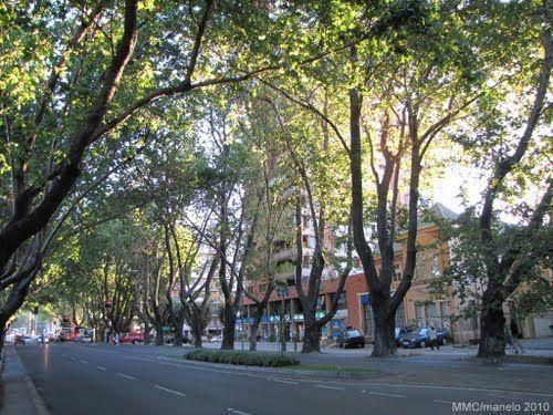 Esquina  Comercial a una cuadra de Avenida Libertad.