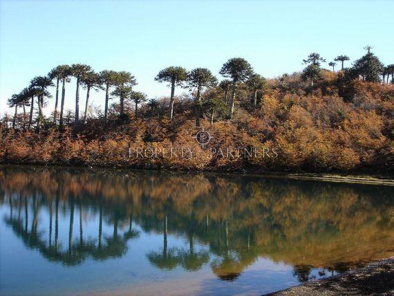 Maravilloso fundo forestal, agrícola y ganadero.