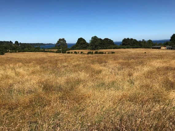 Oportunidad: Excelente terreno segunda línea Lago LLanquihue