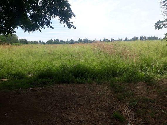 Hermosos terrenos camino a Cato