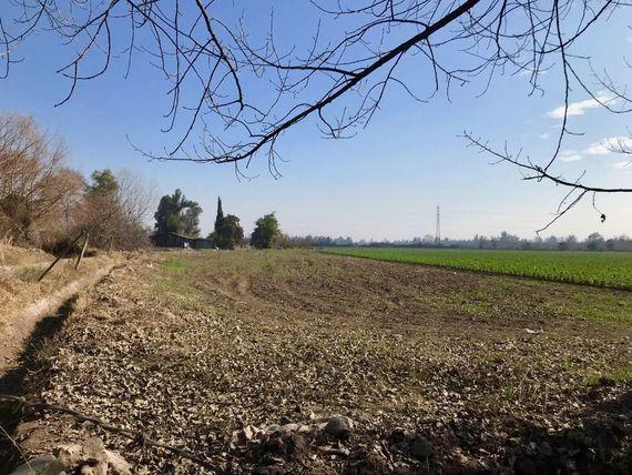 """Oportunidad parcela de 5,5 hectáreas a pasos de Av. <span itemprop=""""addressLocality"""">Calera de Tango</span>"""