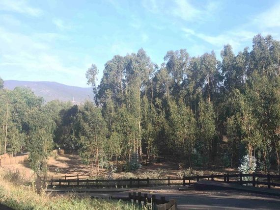 Loteo Privado La Reserva