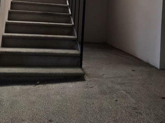 Bodega en renta Xalapa