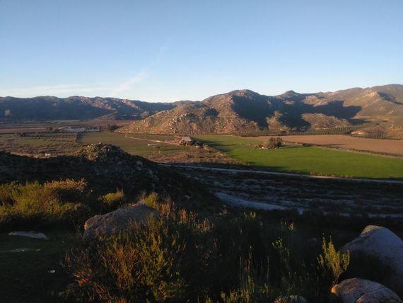 16 Hectáreas en Valle de Guadalupe