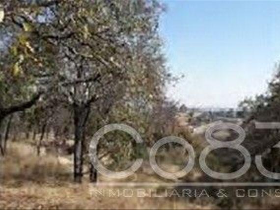 """Venta - Terreno -Atizapán de Zaragoza - 49782  m - <span itemscope="""""""" itemtype=""""http://schema.org/TradeAction""""><span itemprop=""""price"""">$ 75.000.000</span></span>"""