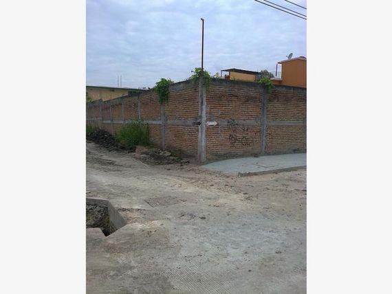 Terreno en Renta en Ampl las Palmas