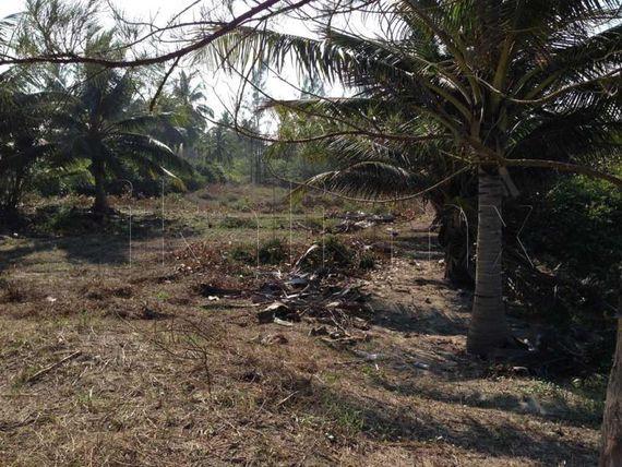 Terreno en Venta en isla de los potreros