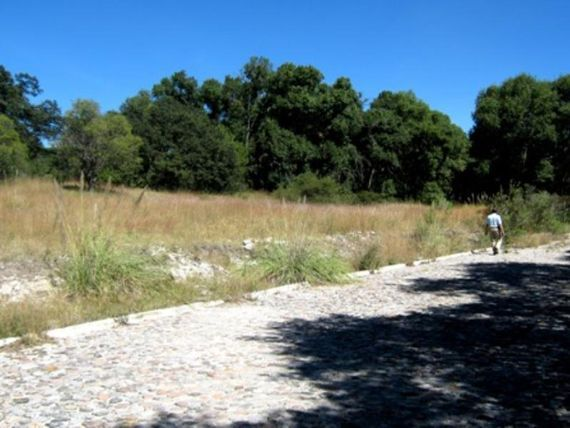 Terreno en Venta en Fracc. Haras del Bosque