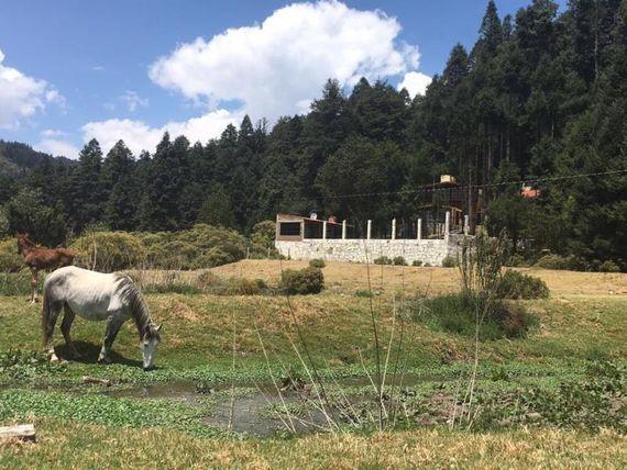 Terreno en Venta en adentrate en el magico bosque de Real del Monte !!!