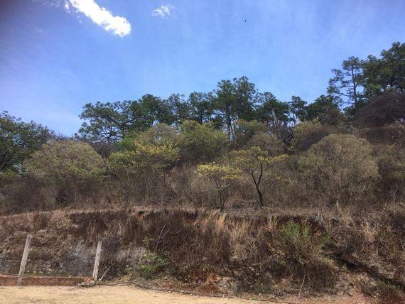 Terreno en Venta en Playa del pinar