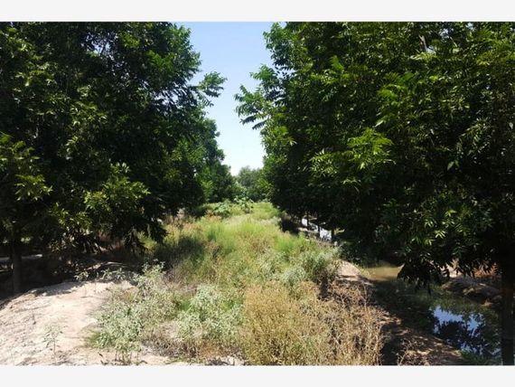 Finca/Rancho en Venta en El Paredon